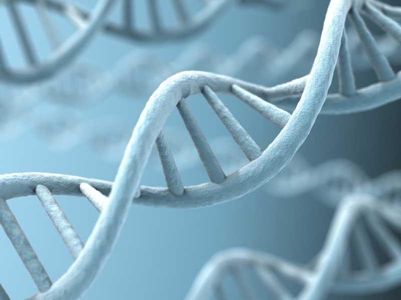 estudio genético de la enfermedad periodontal en Gijón Asturias